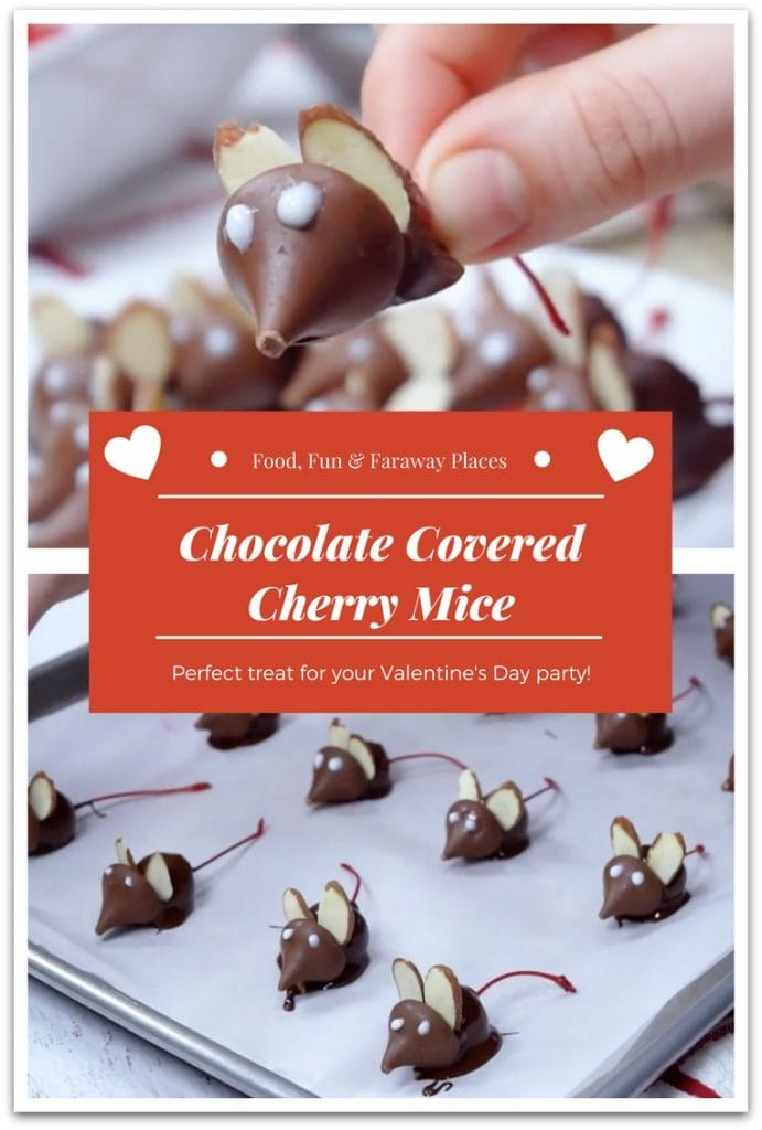 Looking for the perfect Valentine's Day treats to take to that class party? These chocolate covered cherry mice are the perfect fun and delicious treat!