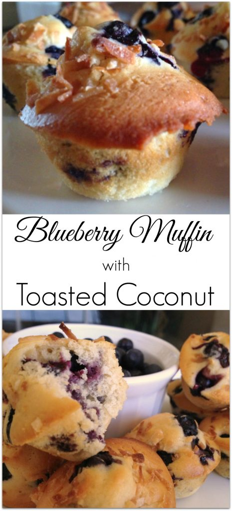 I made this low-fat blueberry muffin with toasted coconut recipe a couple of days ago and was thrilled with the results!