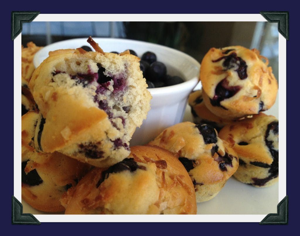 recipes Low fat blueberry