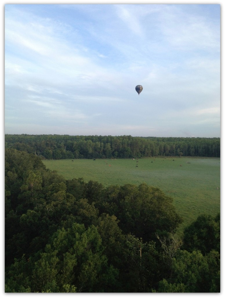 Is a hot air balloon ride on your bucket list? It should be!
