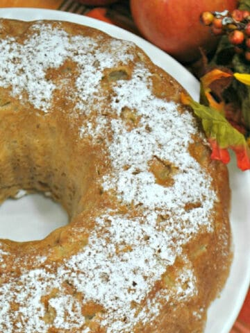 Apple cake with powdered sugar on a white plate on a fall tablecloth.