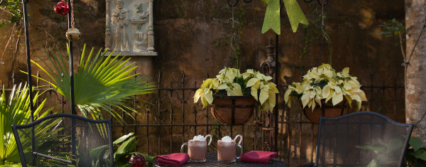 The St Francis Inn is the perfect romantic getaway, with beautifully decorated bedrooms and gorgeous gardens. They also serve breakfast and the food looks amazing. The town of St. Augustine Florida is also fun to visit, with quant shops and wonderful restaurants for lunch or dinner.
