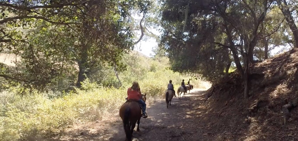 Riding horses in Cayucos California was so much fun. There is so much to do when vacationing in California!