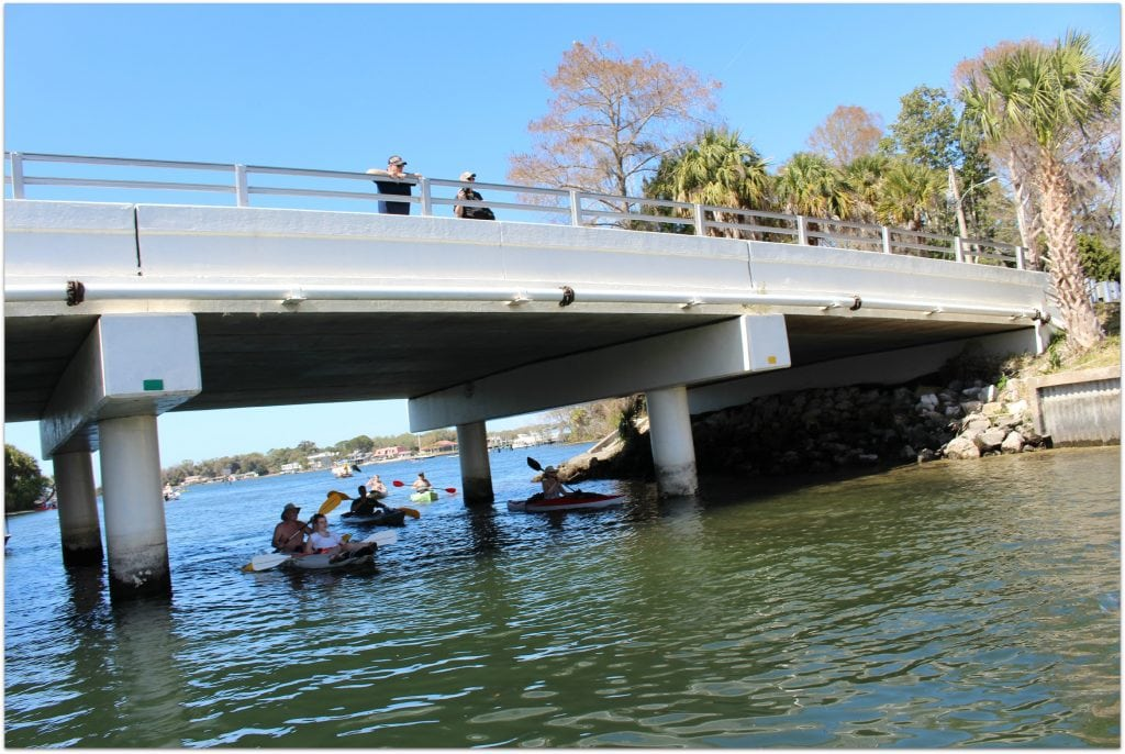 There are so many fun family activities you can do in Citrus County! Swimming with manatees was on our schedule on this day!