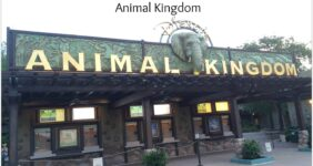 Backstage Tales Tour Experience at Animal Kingdom #MonkeyKingdomEvent