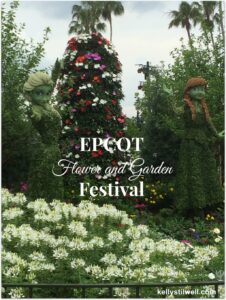 EPCOT International Flower and Garden Festival 2015 #MonkeyKingdomEvent