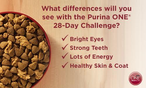 purina one challenge