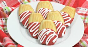 Chocolate Covered Madeleine Cookies