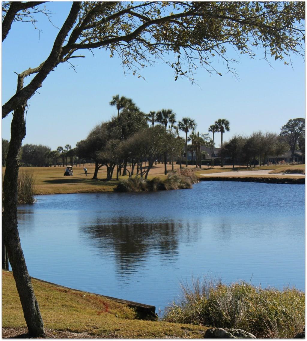 Lake at a golf resort in Florida
