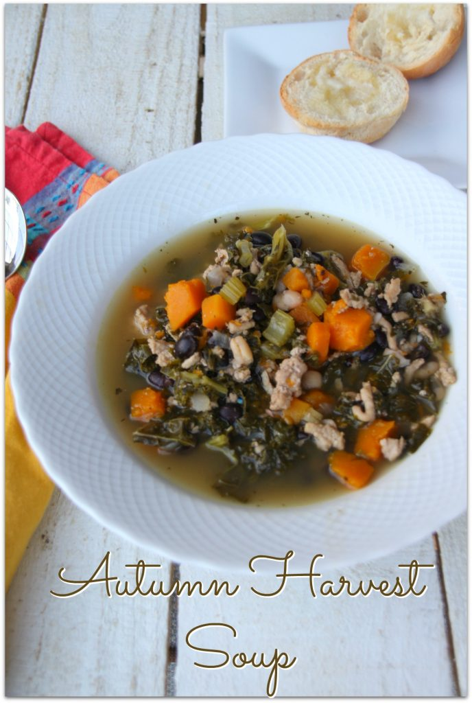 I've been itching to make an Autumn harvest soup. There is something inside me that yearns for a little fall this time of year.