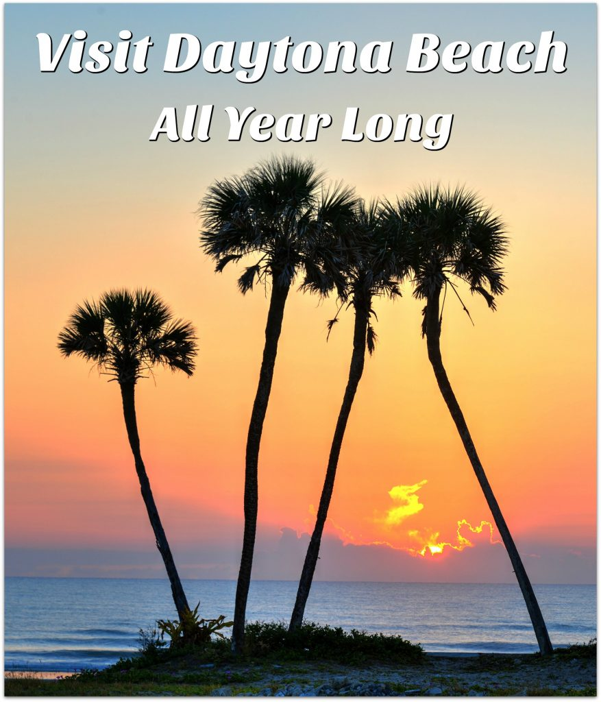 When you think of Daytona Beach, you might think of summer fun, like hitting the beach, building sandcastles, riding the waves. but Daytona Beach has so much more!