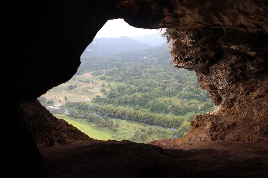Cueva Ventana, The Window Cave, is a beautiful natural cavern found in the cliffs of Arecibo, Puerto Rico.