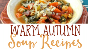 Once the leaves start to fall and the temperatures start to drop, it's time to put on a big pot of delicious soup! There's nothing better to warm up our bodies, and I love the way my house smells when soup is simmering on the stove.