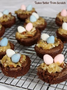 Bird Nest Brownies with German Chocolate frosting.