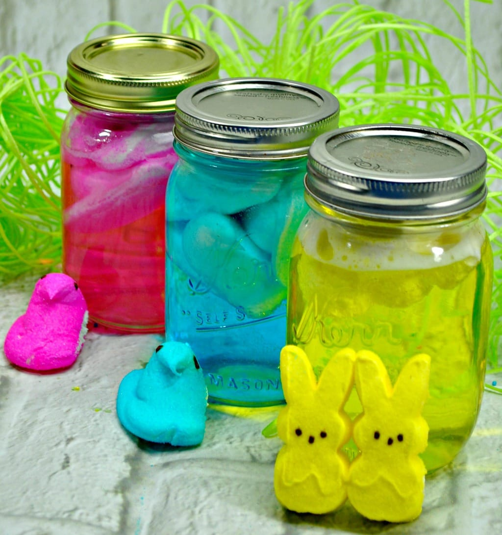 What would this spring holiday be without Easter Peeps Treats? We look forward to that month or so before Easter when the Peeps hit the shelves.