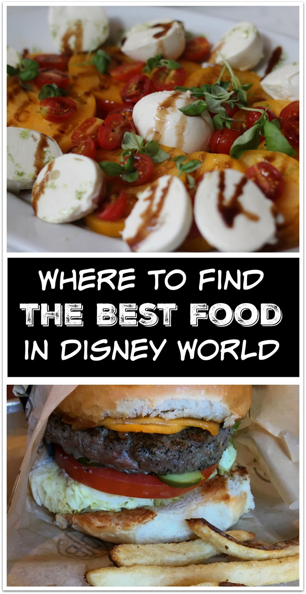 Want to know where you can find the best food in Walt Disney World parks? This post is for you! Learn how to eat your way through and around Disney!