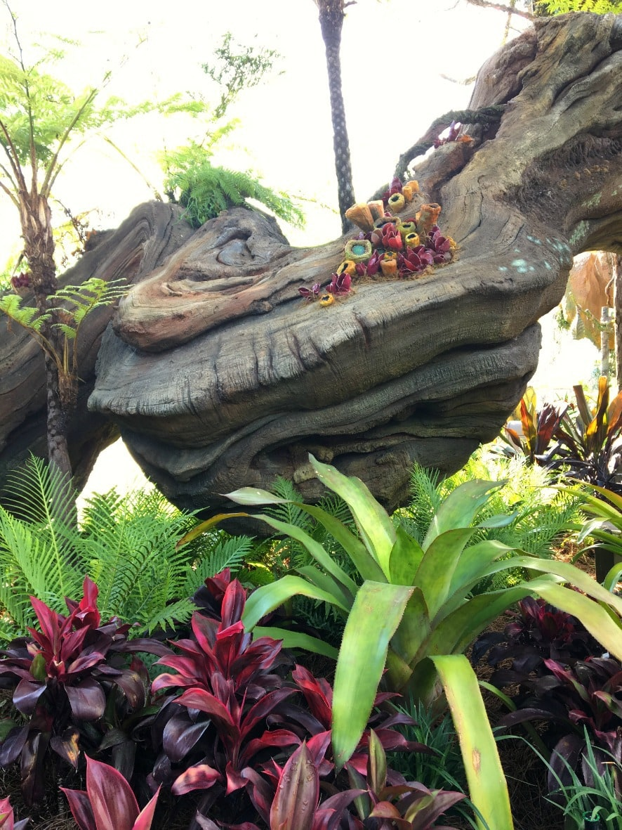Step over the threshold from Animal Kingdom into Pandora The World of Avatar, and you truly are transported to another land, one of floating mountains, bioluminescent rainforests, and gorgeous waterfalls.
