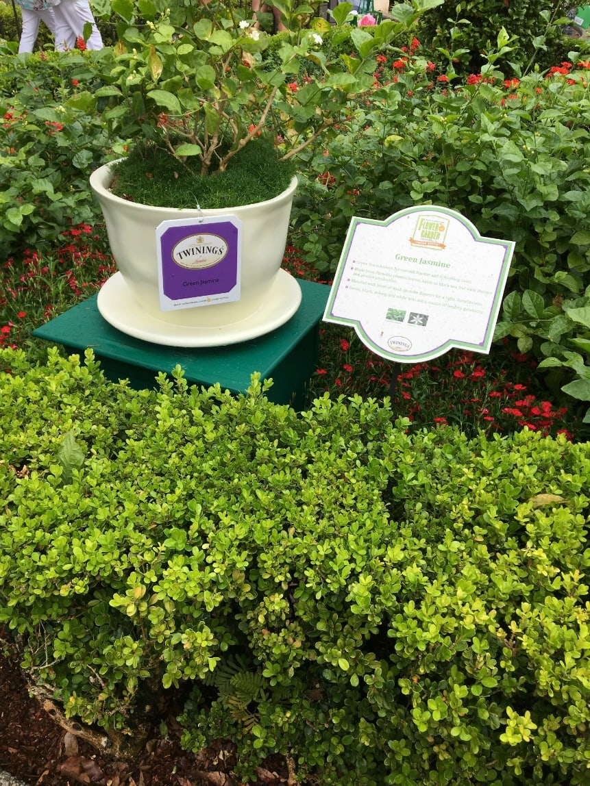 The Twinings Royal Tea Tour at Epcot is a must if you love tea!
