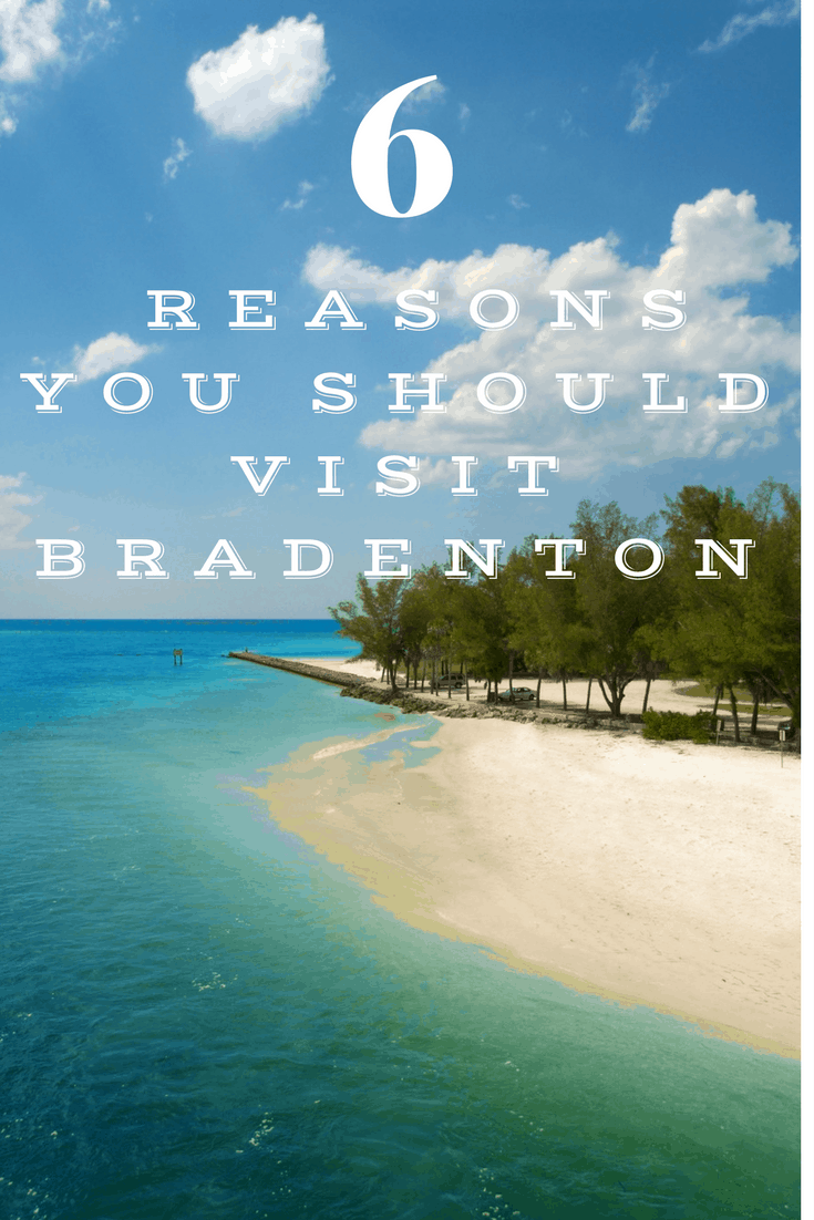 I love living in Bradenton Florida. We love the sun, the beach, warm weather (almost) all year long, and we just adore the nature.