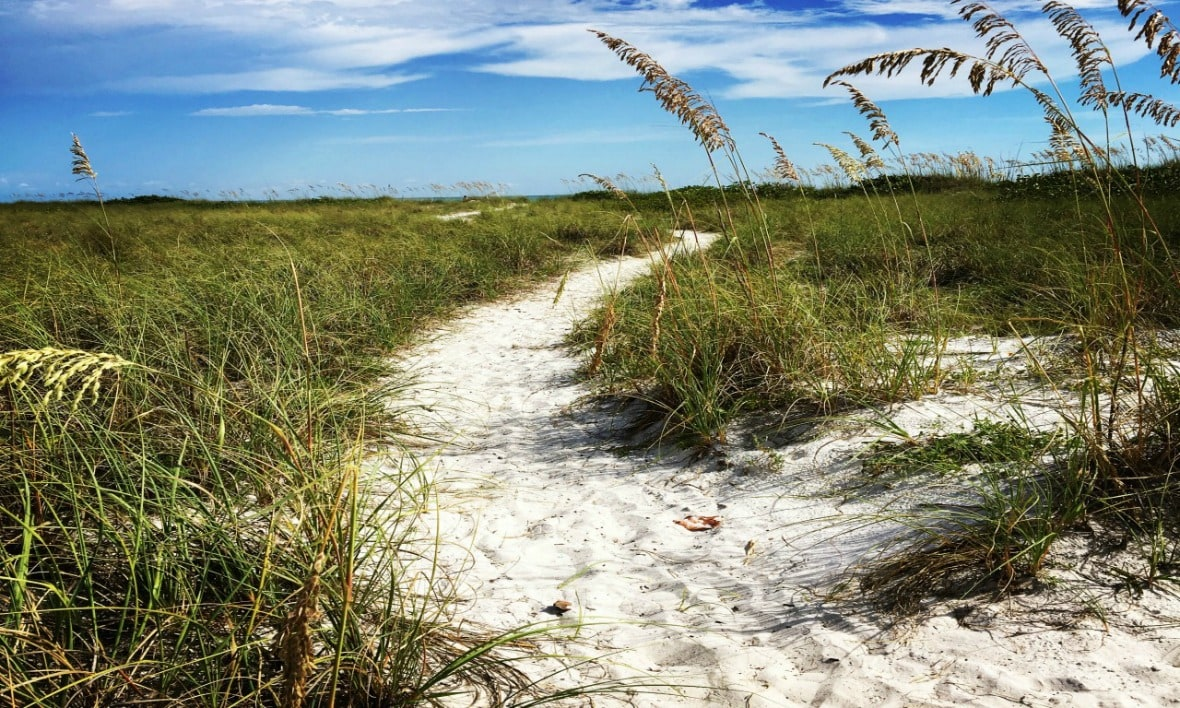 Sarasota beach path to the ocean.