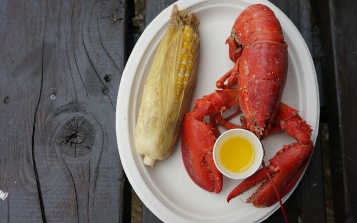Who knew there was a Maine Windjammer cruise for foodies? If you are a foodie as I am, the J & E Riggin Windjammer cruise is the way to go.