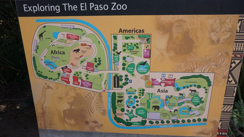 If you are local to El Paso you might already know that the El Paso Zoo is a pretty amazing place to visit. If you're traveling through El Paso, you should definitely put the El Paso Zoo on your list of things to do.