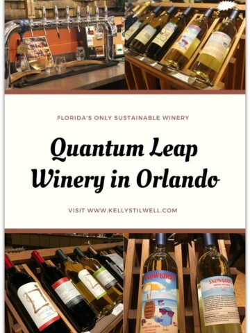Last month I visited Quantum Leap Winery for a tour and tasting on my way to spend a few days in Winter Park. The winery is located at 1312 Wilfred Drive in Orlando, and it's Florida's only sustainable winery.