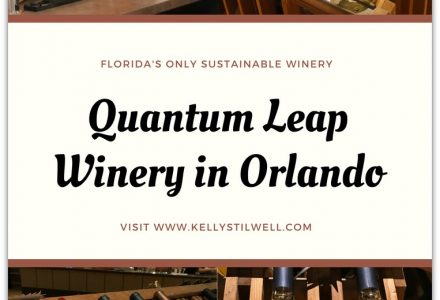 Wine Tasting at Quantum Leap Winery in Orlando