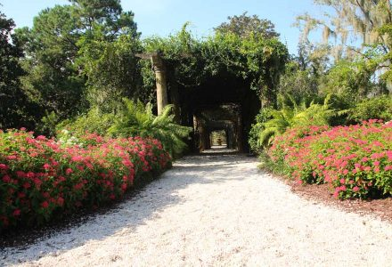 Airlie Gardens: What You're Missing in the Wilmington Beaches