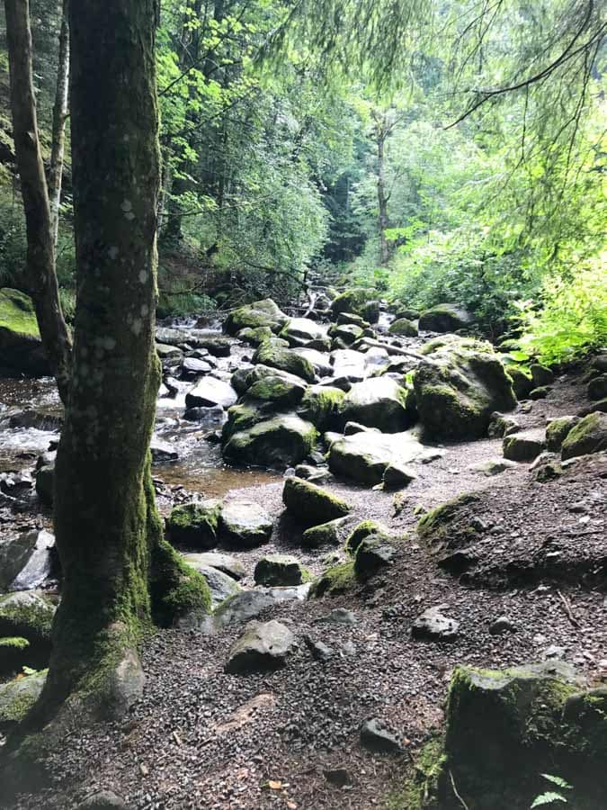 If you're planning a trip to the Black Forest Germany and wondering about what to do, you'll be surprised at how many diverse activities you'll find. Black Forest hiking was my daughters favorite part of the trip!