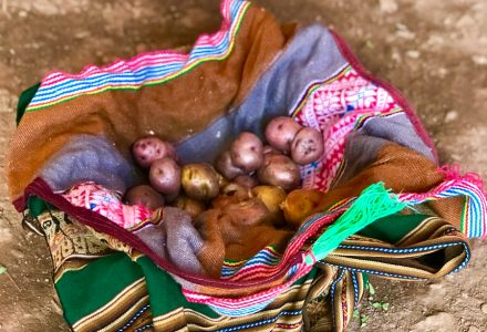 Cusco Tour: Potato Park