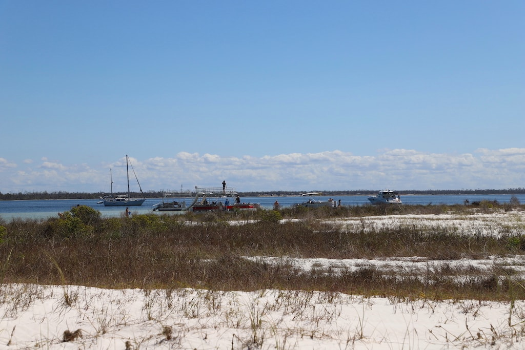 Beach dunes with boats in the distance.