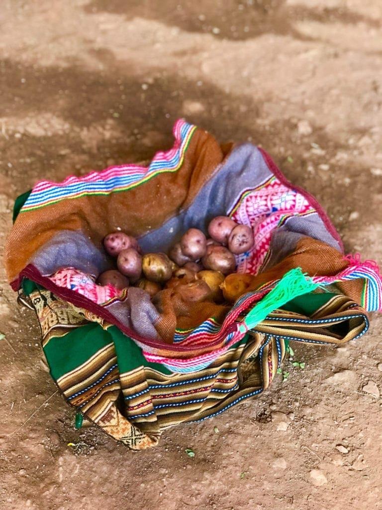 Peruvian Shrimp Causa with potatoes