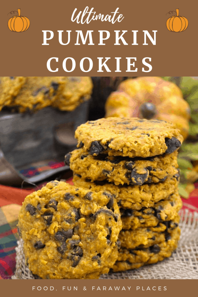 Adding oatmeal and chocolate chips to these pumpkin cookies take them to a whole new level! This is the perfect recipe for fall.