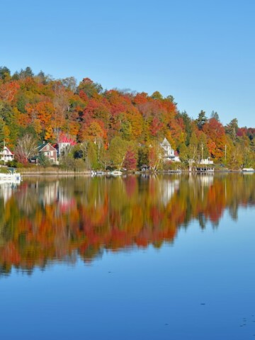 From Georgia to Maine, the east coast has incredible fall foliage to enjoy.