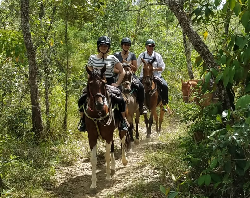 horseback riding Blancaneaux