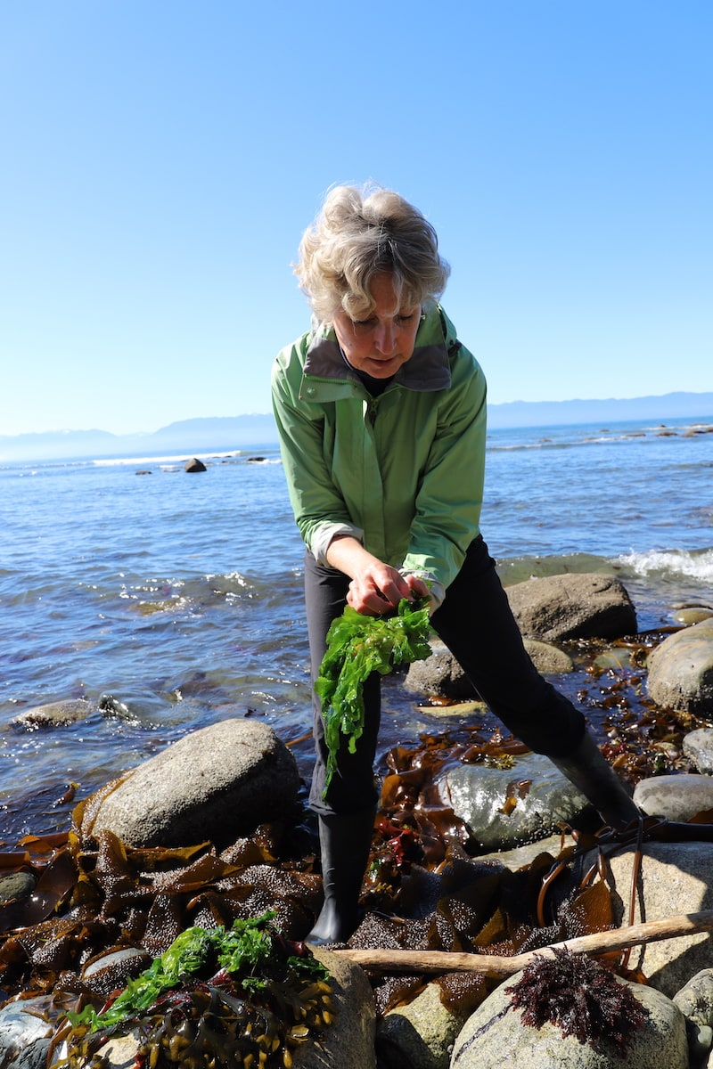 woman holding seaweed standing on rocks