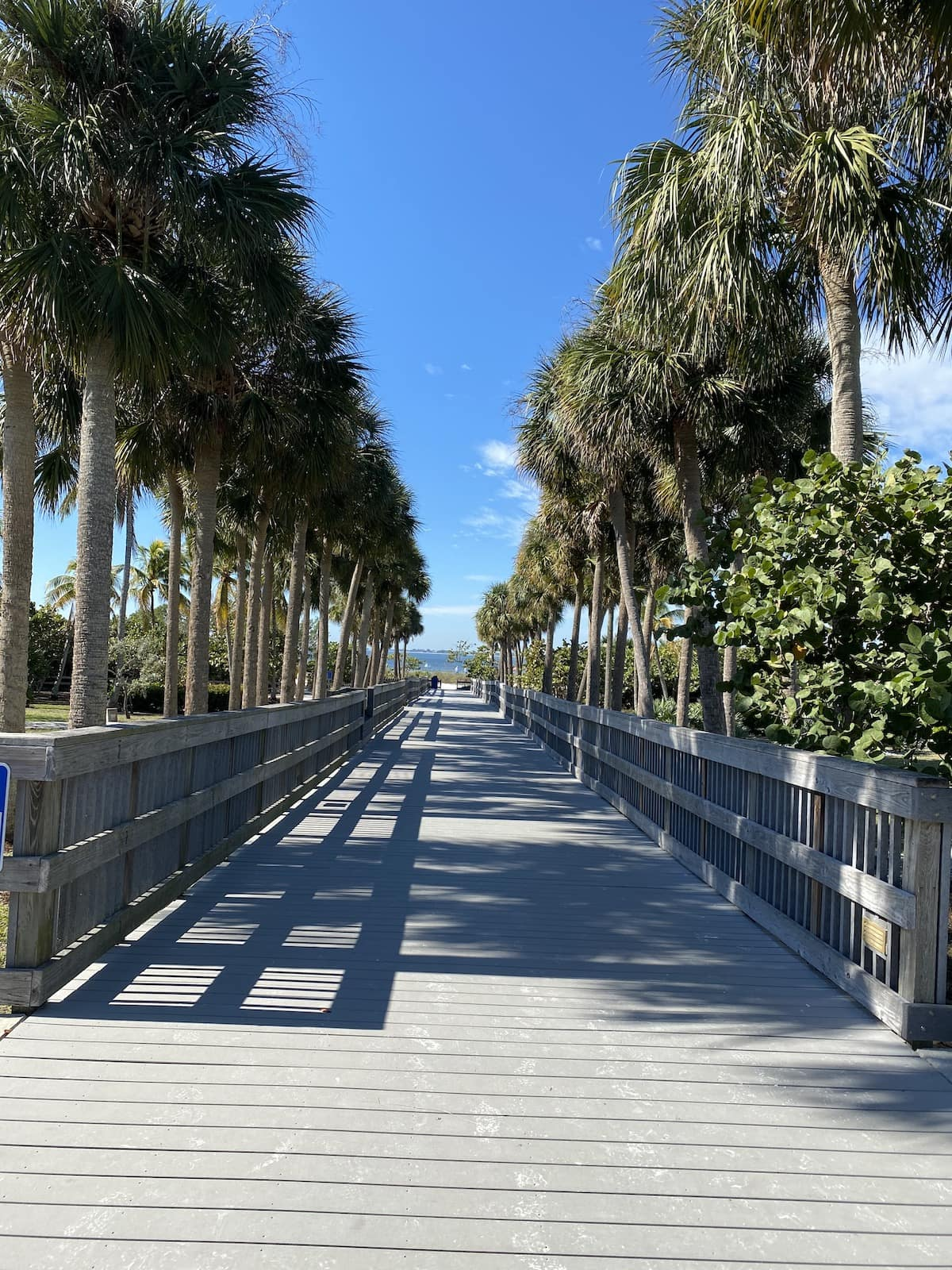 Bowditch Fort Myers Beach