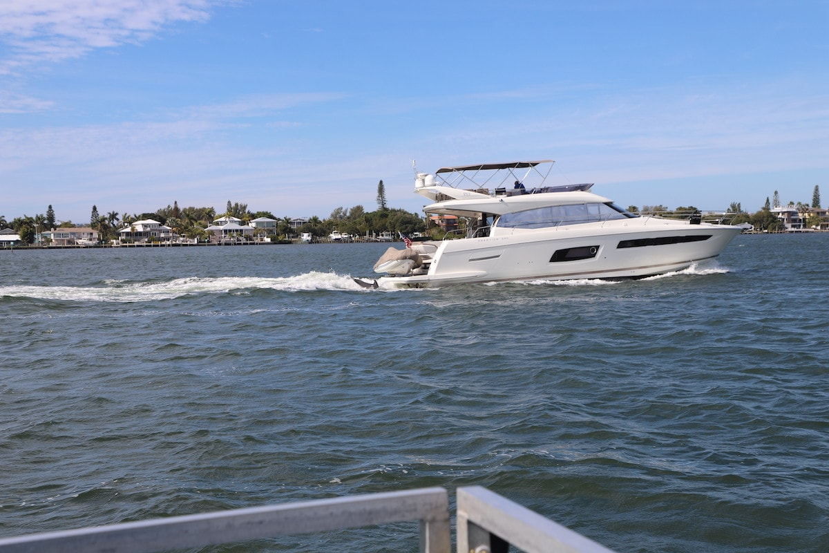 A dolphin cruise is a fun thing to do on Anna Maria Island.