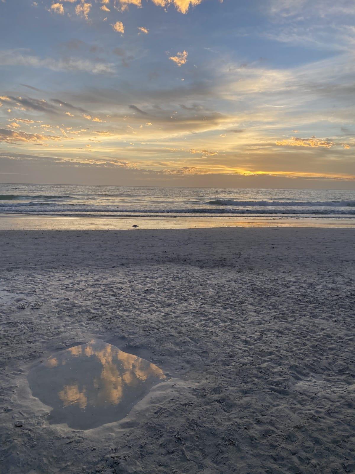 Anna Maria Island Beach at the Sandbar.