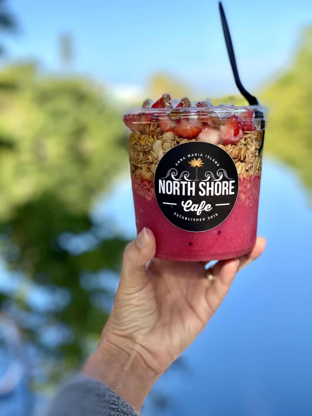 Smoothie Bowl with yogurt, granola, strawberries and almond butter with river in background.