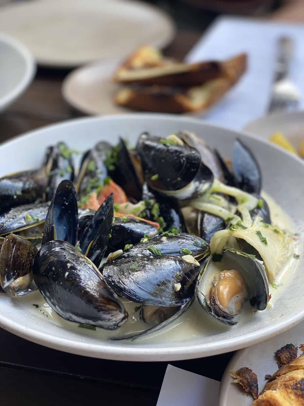 Mussels at Boca at Sarasota Restaurants.