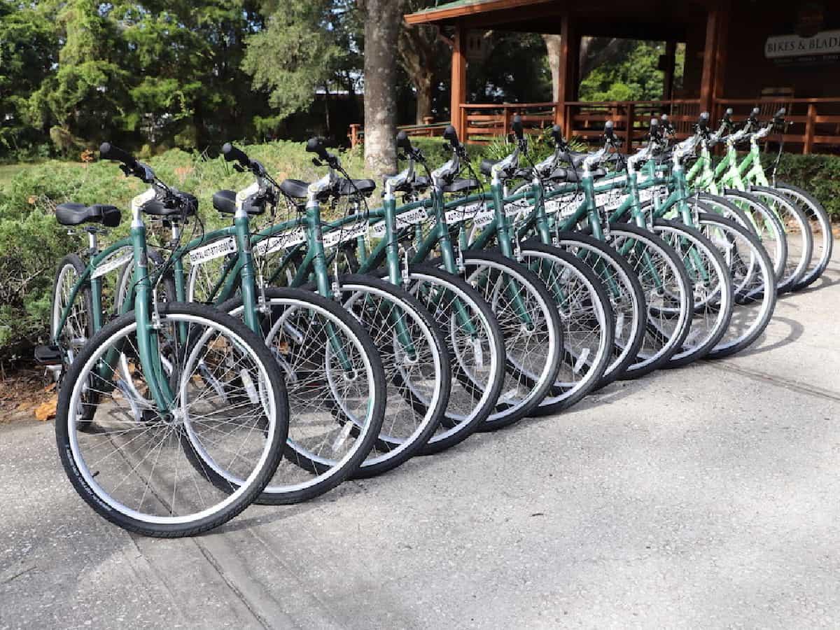 Bikes lined up at bike rental shop.